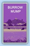 LSiviter burrow mump purple